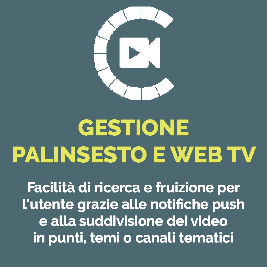gestione palinsesto e web tv icona
